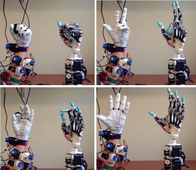 美国科学家研制出柔性仿生机械手